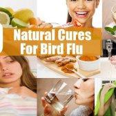 10 meilleurs remèdes naturels pour la grippe aviaire