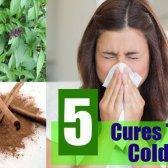 5 remèdes naturels à froid