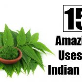 15 utilisations étonnants du lilas indien