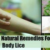 7 remèdes naturels pour les poux de corps