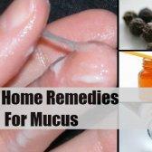 8 Accueil recours pour le mucus