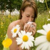 Comment guérir les allergies