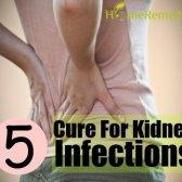 Remède naturel pour les infections du rein