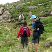 Top 14 avantages de la marche et de la randonnée pour le fitness et bien-être