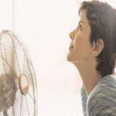 Top 6 des remèdes de régime pour les bouffées de chaleur