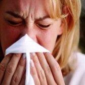 Traitement de l'alimentation Haut pour les allergies