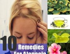 10 remèdes à base de plantes pour l'alopécie