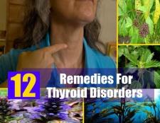 12 remèdes à base de plantes pour les troubles de la thyroïde