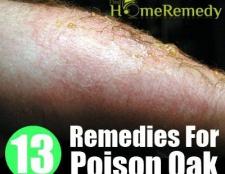 13 Accueil recours pour le chêne de poison