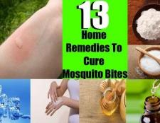 Top 13 remèdes maison pour guérir les piqûres de moustiques