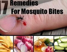 14 Pratique remède à la maison pour les moustiques allégement de la morsure