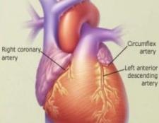 5 meilleurs vitamines pour les maladies cardiovasculaires
