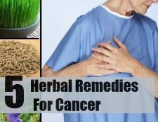 5 remèdes à base de plantes pour le cancer