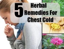 5 remèdes à base de plantes pour la poitrine froide