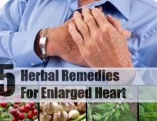 5 remèdes à base de plantes pour hypertrophie du coeur