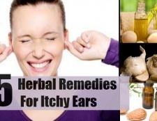 5 remèdes à base de plantes pour les oreilles qui démangent