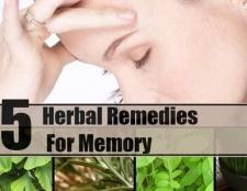 5 remèdes à base de plantes pour la mémoire