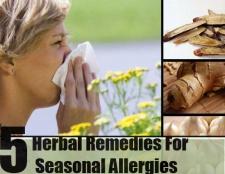 5 remèdes à base de plantes pour les allergies saisonnières