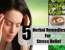 5 remèdes à base de plantes pour le soulagement du stress