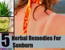 5 remèdes à base de plantes pour les coups de soleil