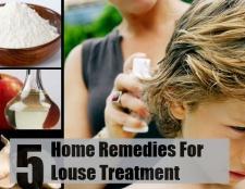 5 remèdes maison importants pour le traitement des poux