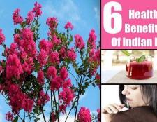 6 avantages pour la santé étonnants du lilas indien