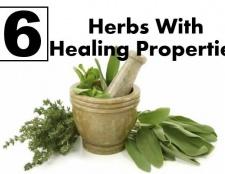 6 herbes étonnants avec des propriétés de guérison