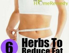 6 herbes merveilleux pour réduire la graisse