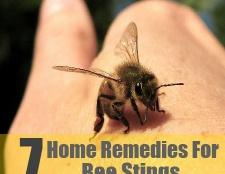 7 Accueil recours pour les piqûres d'abeilles
