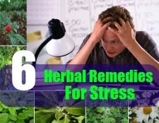6 Différents types de remèdes pour le stress