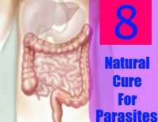 8 remède naturel pour les parasites