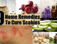 Top 9 des remèdes maison pour guérir la gale