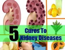 5 remèdes naturels à des maladies rénales