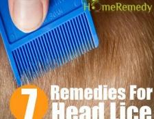 Certains meilleurs et simples remèdes maison pour les poux de tête