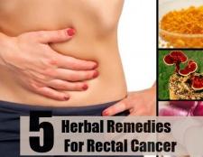Top 5 des remèdes à base de plantes pour le cancer du rectum