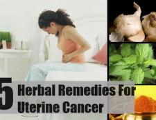 Top 5 des remèdes à base de plantes pour le cancer de l'utérus