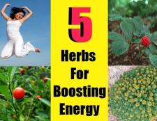 Top 5 des herbes pour stimuler l'énergie