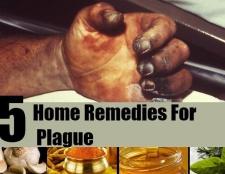 Top 5 des remèdes maison pour la peste