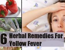 Top 6 des remèdes pour la fièvre jaune