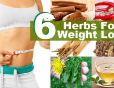 Top 6 des herbes pour ajouter dans votre régime alimentaire pour perdre du poids
