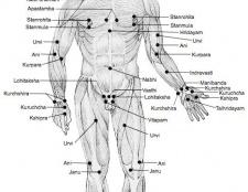 Des points Marma de l'ayurveda-comment les utiliser