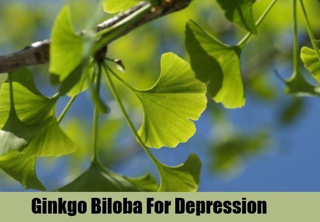 Avis Ginkgo Biloba - 10 exercices de concentration pour muscler votre cerveau