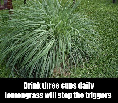 Lemmongrass