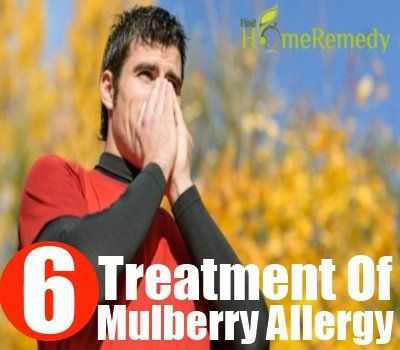 Mulberry allergie