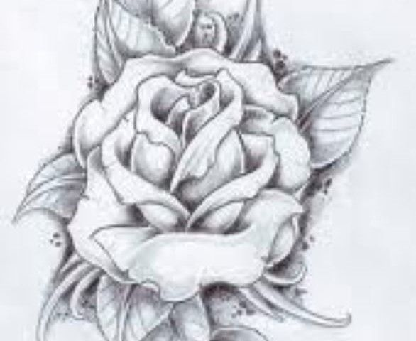 Rose Flower Design Tattoo